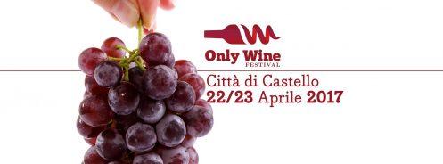 locandina only wine festival